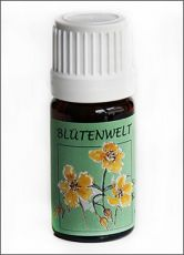 23 - Bachblüte Olive